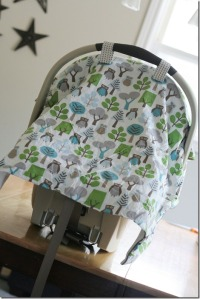 Carseat Blanket 044 Edit